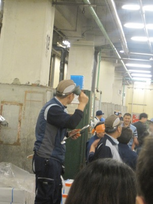 Tuna fish auction tsukiji