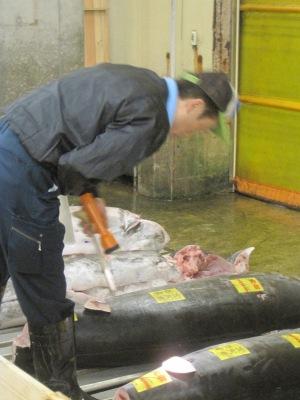 Tsukiji tuna fish auction torch