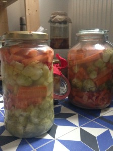 Fermented vegetable jar
