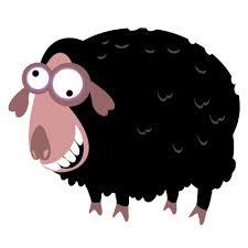 black sheep pinterest