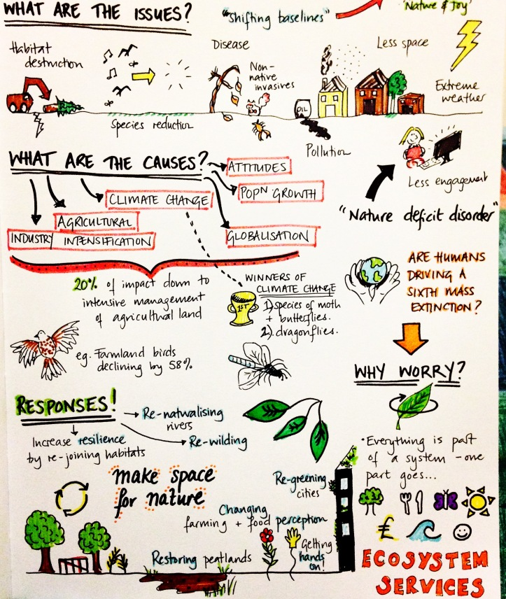 animated infographic ecosystem services